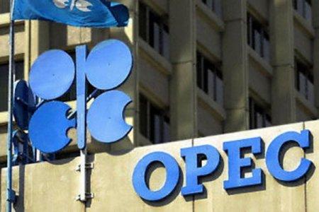OPEC-in qərarına Azərbaycandan münasibət