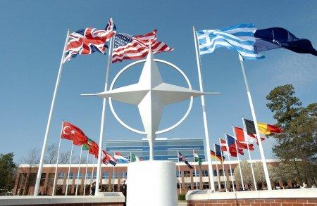 Azərbaycan NATO-nun tanıtım proqramında təmsil olunur